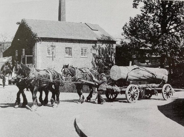 Photo of Canada Mill with horses and a cart pulling part of a felled tree trunk