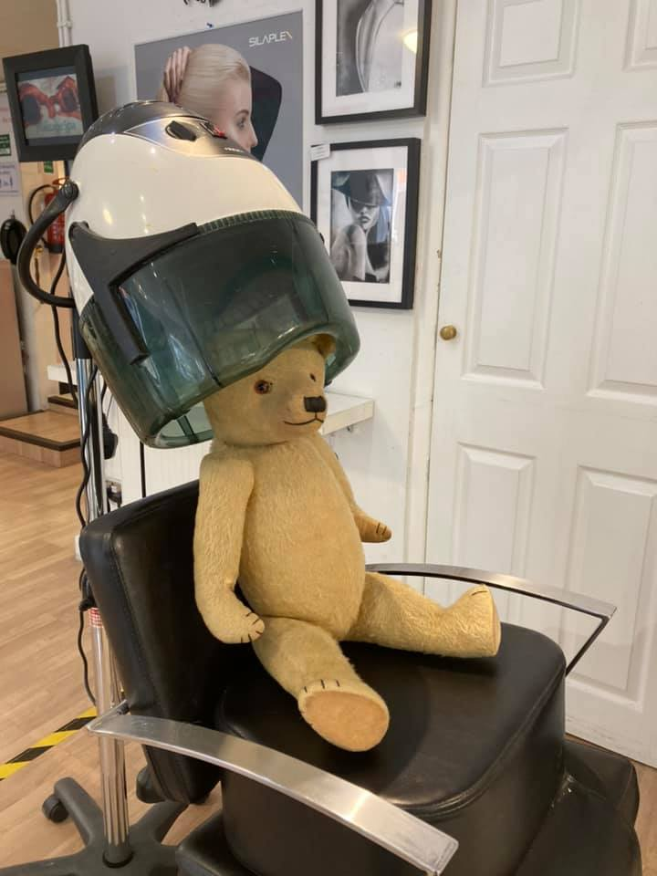Teddy at Flix having his hair done
