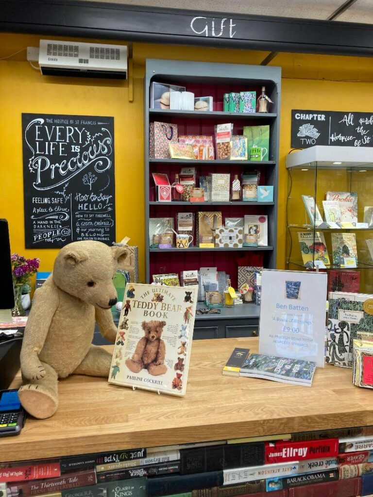 Teddy reading book about teddies in Chapter Two Bookshop