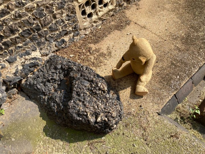 Winifred the bear sat next to and looking at a large stone